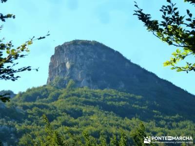 Hayedos Rioja Alavesa- Sierra Cantabria- Toloño;agencias viajes madrid ciudad encantada tamajon pue